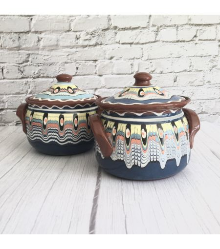 Blue Cooking Casseroles with Lid (Set of 2)